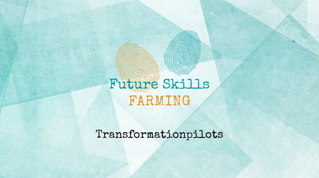 Transformation Pilots
