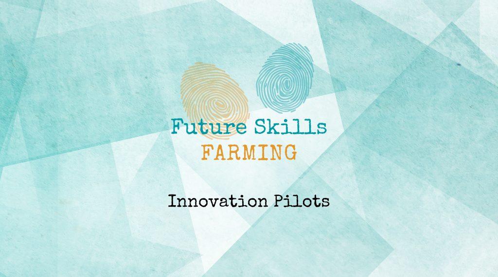 Innovation Pilots