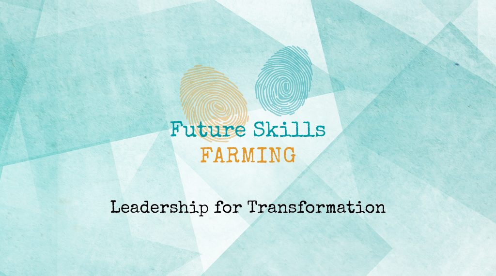 Leadership for Transformation